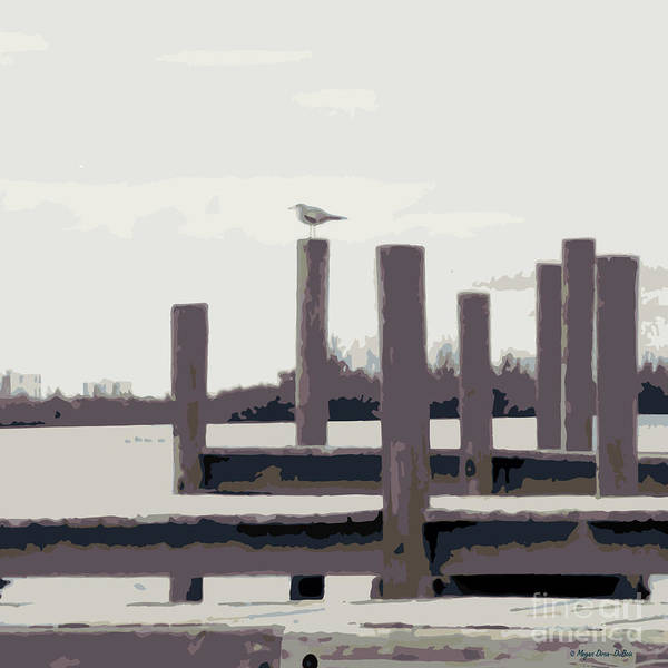 Photograph - Waterbirds2 by Megan Dirsa-DuBois