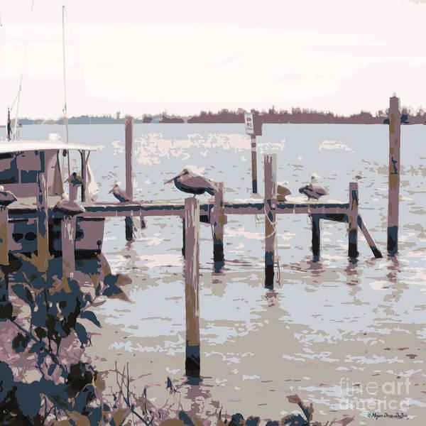 Photograph - Waterbirds4 by Megan Dirsa-DuBois