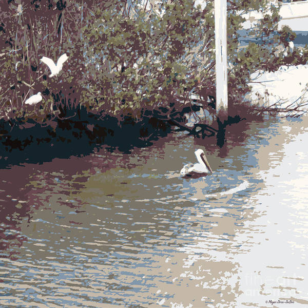 Photograph - Waterbirds6 by Megan Dirsa-DuBois