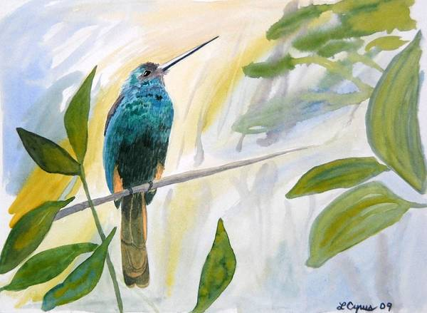 Painting - Watercolor - Jacamar In The Rainforest by Cascade Colors