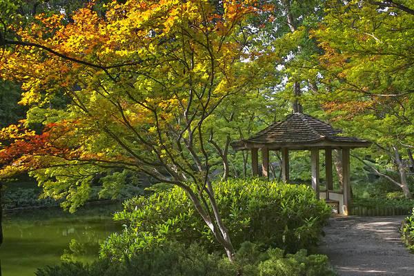 Photograph - Watercolor Gardens by Joan Carroll