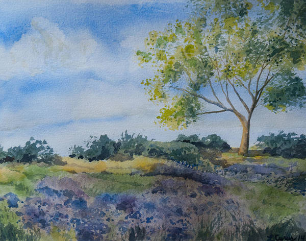 Painting - Watercolor - Tree And Meadow by Cascade Colors