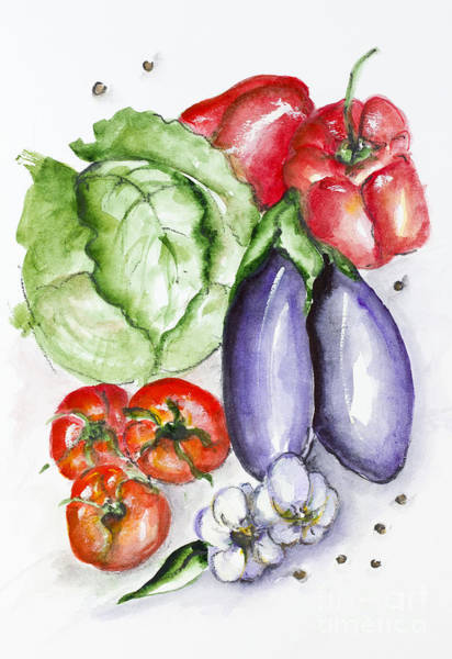 Cabbage White Painting - Watercolor Vegetables Set by Irina Gromovaja