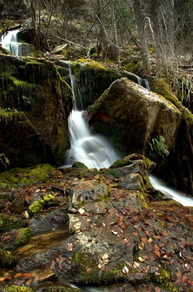 Photograph - Waterfall - Naramata Dsc0065-001 by Guy Hoffman