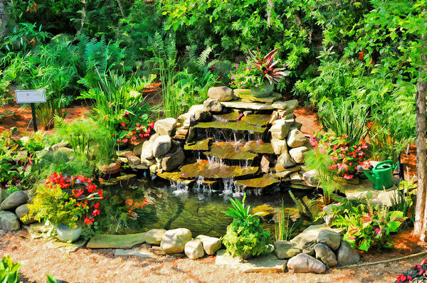 Photograph - Garden Waterfall And Goldfish Pond by Ginger Wakem
