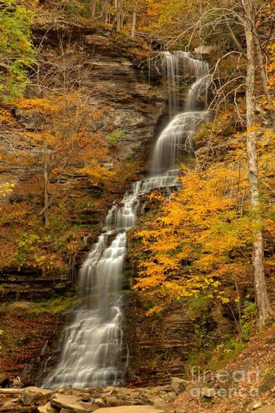 Photograph - Waterfall At Gauley Bridge by Adam Jewell