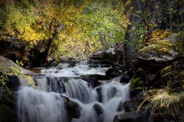Photograph - Waterfall At Indian Rock Bc by Guy Hoffman