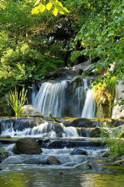 Photograph - Waterfall At Lake Katherine by Larry Bohlin