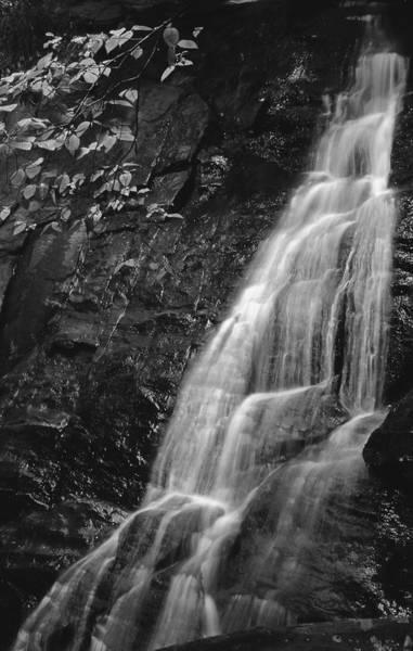 Photograph - Waterfall by Harold Rau