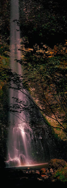 Peacefulness Photograph - Waterfall In A Forest, Columbia Gorge by Panoramic Images