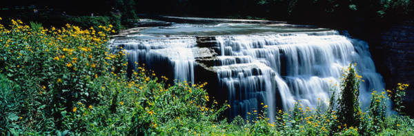 Genesee Photograph - Waterfall In A Park, Middle Falls by Panoramic Images