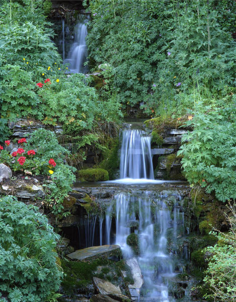 Photograph - 1m3313-v--waterfall In Banff Gardens by Ed  Cooper Photography