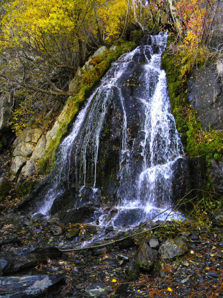 Photograph - Waterfall In Kings Canyon Nevada by Frank Wilson