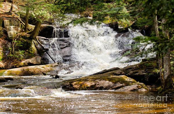 Photograph - Waterfall In Muskoka by Les Palenik