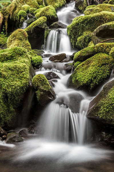 Photograph - Waterfall In The Rain Forest by Pierre Leclerc Photography