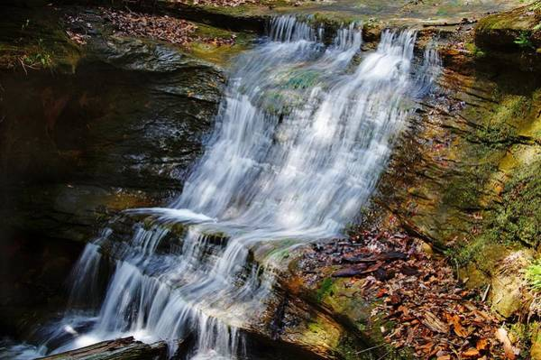 Photograph - Waterfall by Mike Murdock