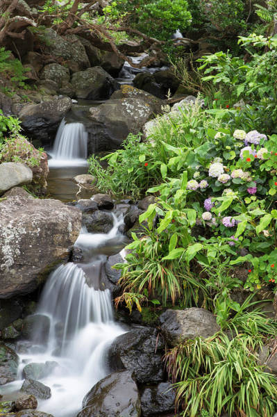 Azores Photograph - Waterfall On Azores Island by Werner Van Steen