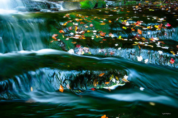 Photograph - Waterfall On Moss by Crystal Wightman