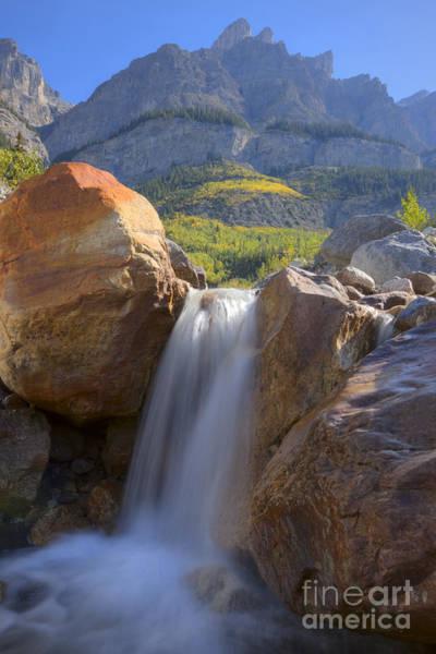 Photograph - Waterfall On Mount Wilson by Dan Jurak