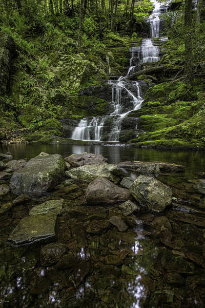 Photograph - Waterfall Pool by Sara Hudock