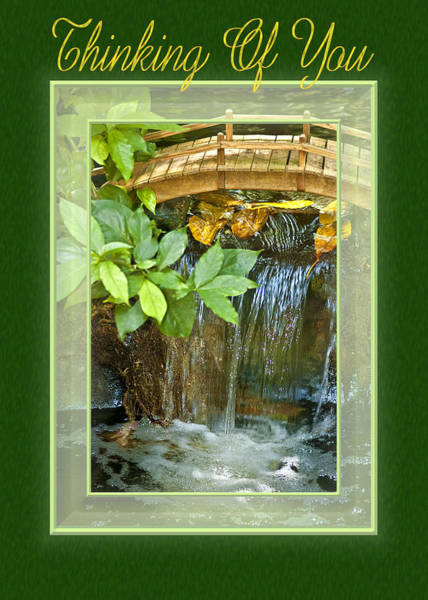 Photograph - Waterfall Thoughts by Carolyn Marshall