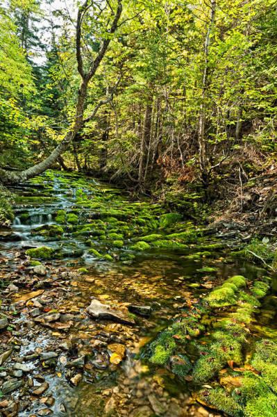 Photograph - Waterfall by U Schade