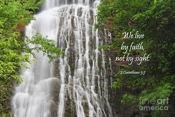 Photograph - Waterfall With New Testament Scripture by Jill Lang