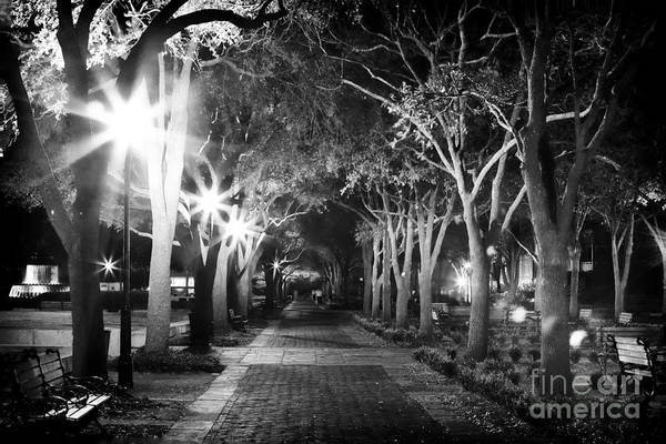 Photograph - Waterfront Park At Night by John Rizzuto