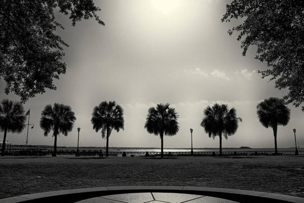 Photograph - Waterfront Park by Patrick M Lynch