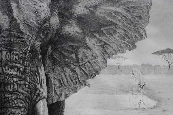 Waterhole Art Print
