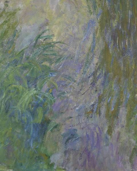 Plant Reproduction Painting - Waterlilies  by Claude Monet