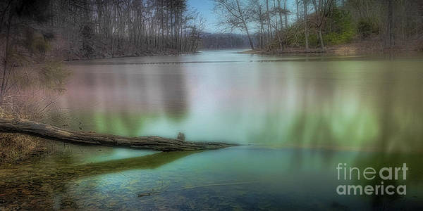 Photograph - Waterlogged Pe by Ken Johnson