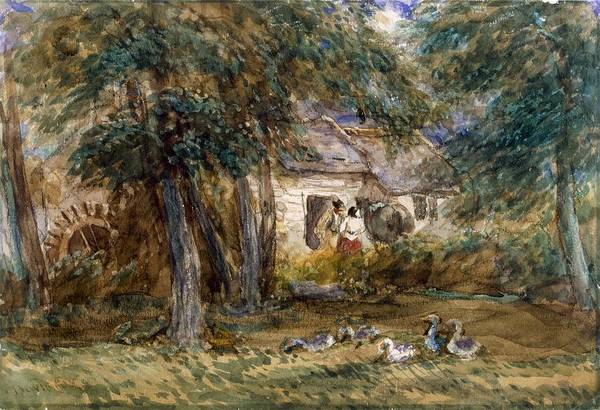 Rural Drawing - Watermill by David Cox