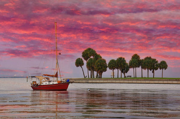 St. Petersburg Photograph - Waterscape by Photography By Susan Hall Frazier
