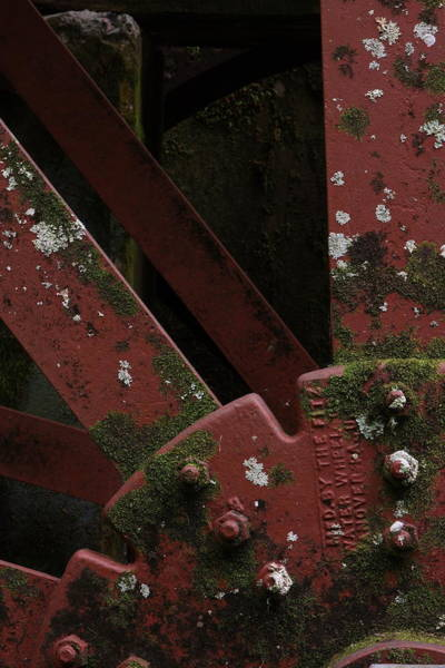 Photograph - Waterwheel Up Close by Daniel Reed