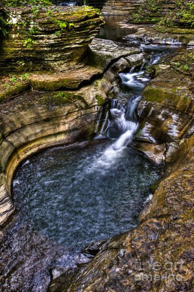 Photograph - Watkins Glen Stream by Anthony Sacco
