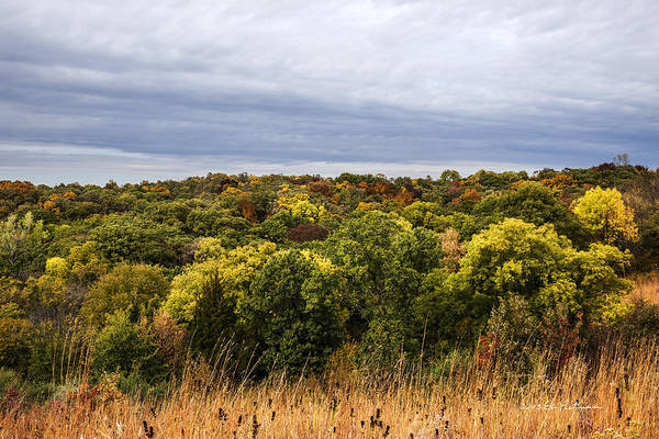 Photograph - Waubonsie State Park In Fall by Edward Peterson