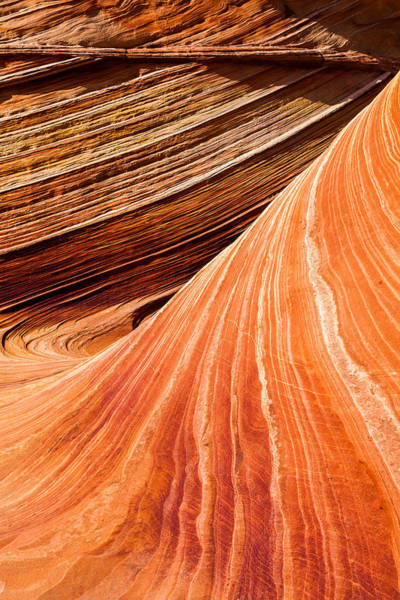 Vermilion Cliffs Wall Art - Photograph - Wave Lines by Chad Dutson