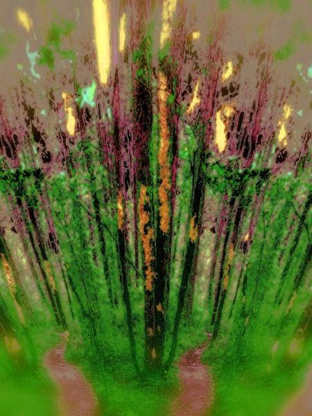 Photograph - Wax Forest Cathedral by Laureen Murtha Menzl