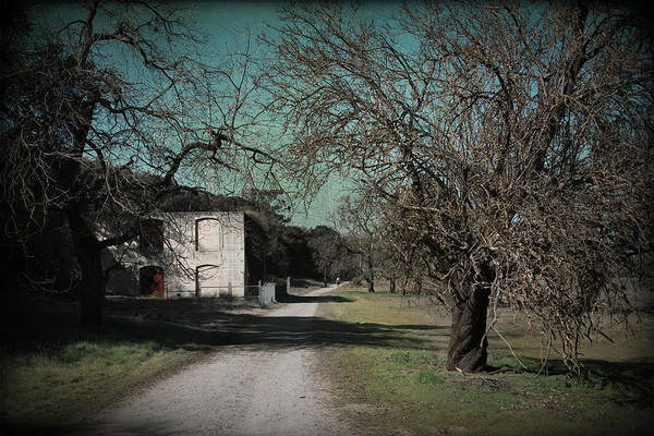Livermore Wall Art - Photograph - Way Back When by Laurie Search