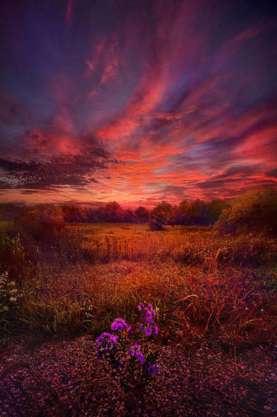 Photograph - We Find Our Own Story by Phil Koch