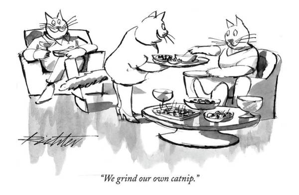 Cats Drawing - We Grind Our Own Catnip by Mischa Richter