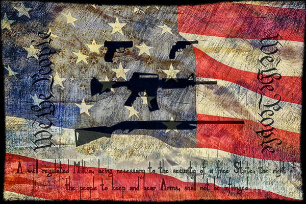 Ar 15 Wall Art - Photograph - We The People by Brian Mollenkopf