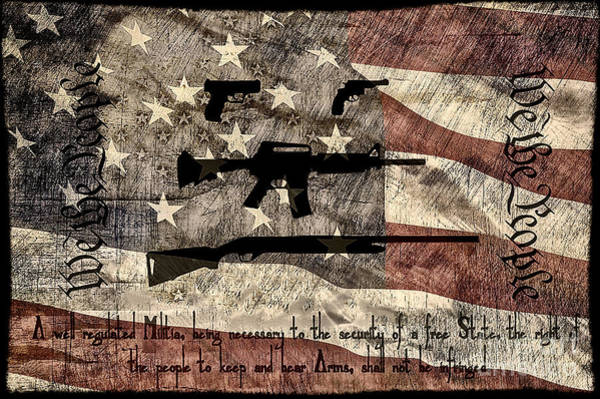 Ar 15 Wall Art - Photograph - We The People Second Amendment by Brian Mollenkopf