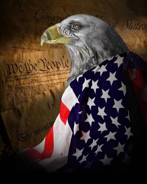 Flag Wall Art - Photograph - We The People by Tom Mc Nemar