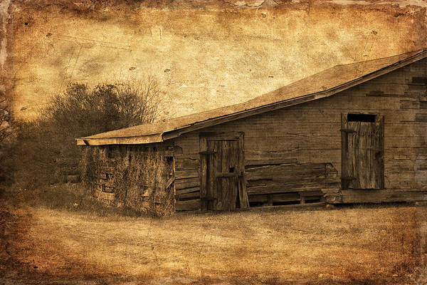 Photograph - Weathered And Old by Kim Hojnacki