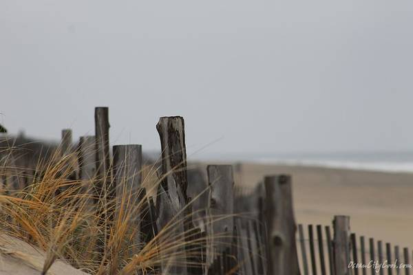 Photograph - Weathered Fences by Robert Banach