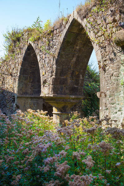 Wall Art - Photograph - Weathered Gothic Arches by W Chris Fooshee