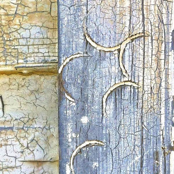 Nature Photograph - Weathered by Julie Gebhardt