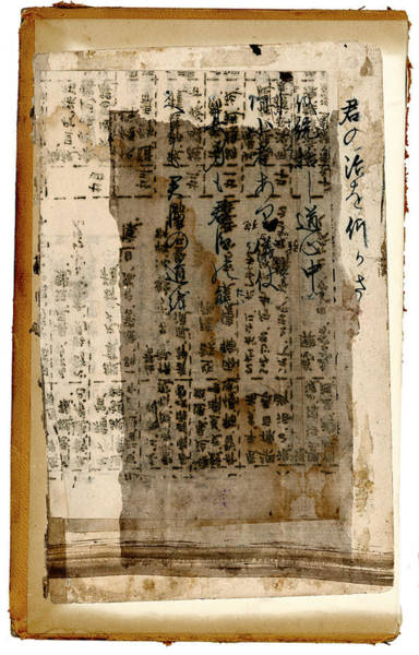 Rip Photograph - Weathered Pages by Carol Leigh